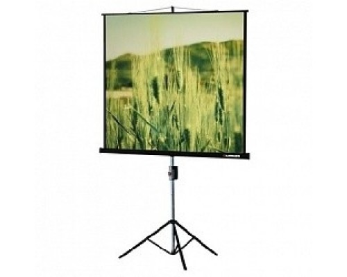 Экраны LUMIEN Lumien Master View LMV-100103 на треноге 180x180 см 1:1 напольный рулонный